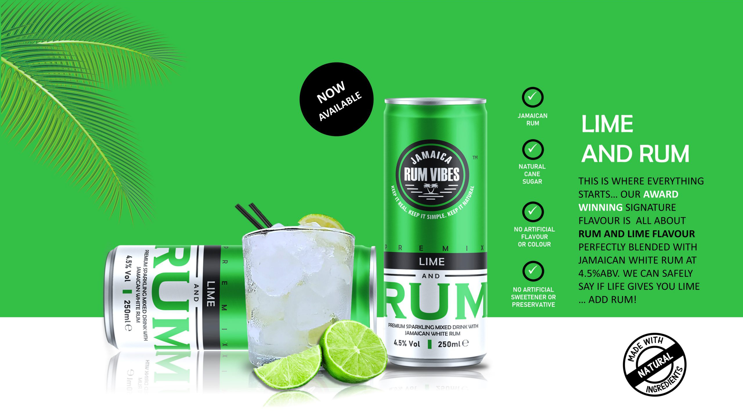 WEBSITE-FILES-lime-scaled